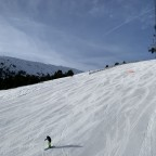 Paniquera blue run