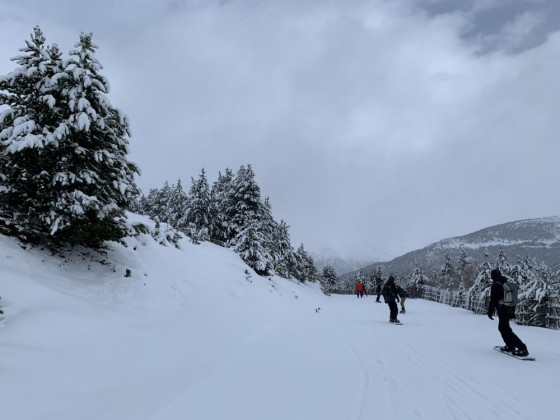 Bosc Fosc blue run, next to the Solana chairlift