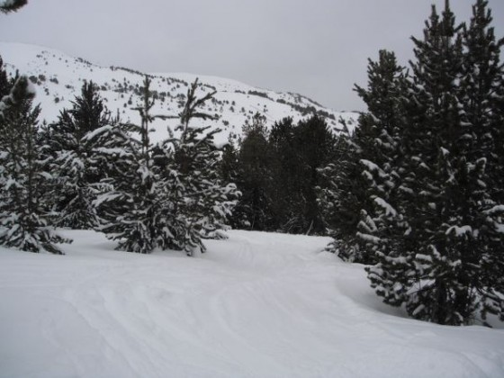 Along Serrat Pinos red piste 22/01
