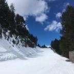 Gall de Bosc leading to El Tarter