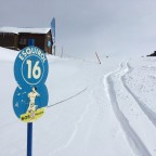 Plenty of thick fresh powder to be found even on blue runs