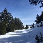 Secret track from Pla de les Pedres chairlift to Solana rope tow