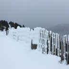 Frosty, snow covered fence by the TSD6 Solana lift