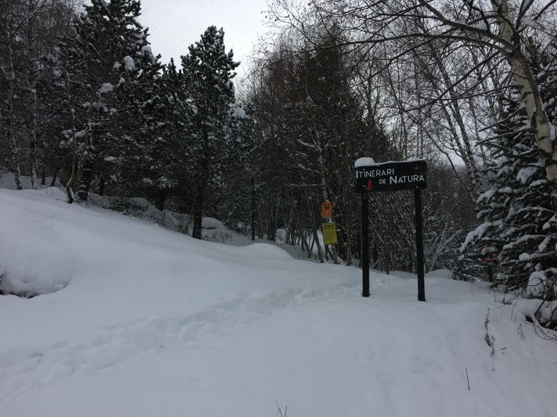 Nature trail in Tarter
